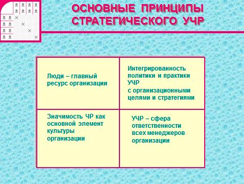 Основные функции управления человеческими ресурсами